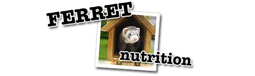 Ferret Nutrition